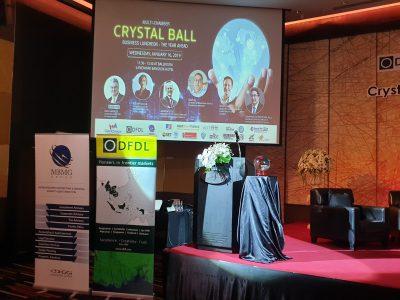 Seminar Invitation: Multi-Chamber Crystal Ball Economic